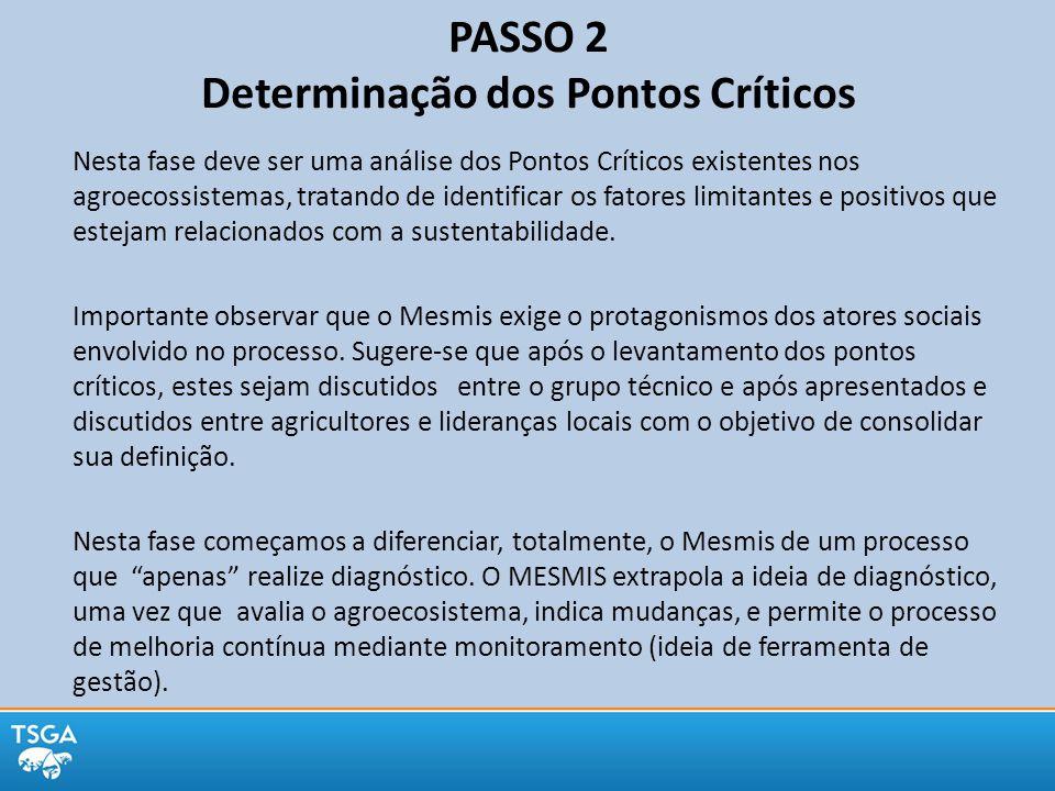 PASSO 2 Determinação dos Pontos Críticos Nesta fase deve ser uma análise dos Pontos Críticos existentes nos agroecossistemas, tratando de identificar