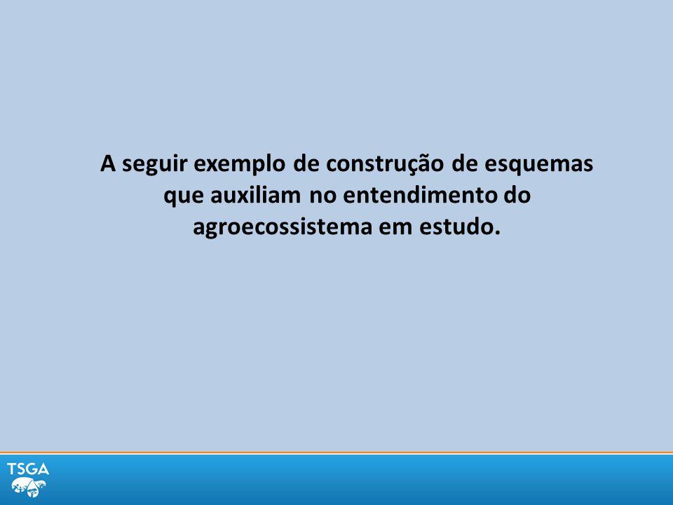 A seguir exemplo de construção de esquemas que auxiliam no entendimento do agroecossistema em estudo.