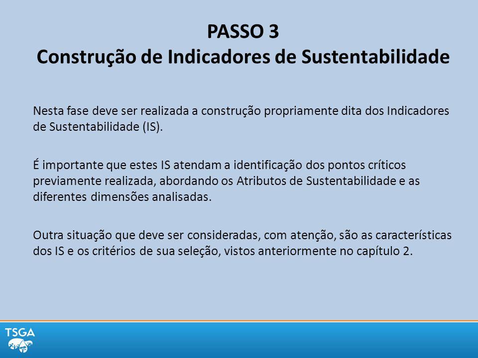 PASSO 3 Construção de Indicadores de Sustentabilidade Nesta fase deve ser realizada a construção propriamente dita dos Indicadores de Sustentabilidade