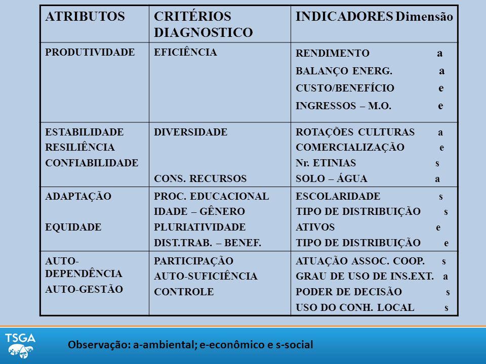 ATRIBUTOSCRITÉRIOS DIAGNOSTICO INDICADORES Dimensão PRODUTIVIDADEEFICIÊNCIA RENDIMENTO a BALANÇO ENERG. a CUSTO/BENEFÍCIO e INGRESSOS – M.O. e ESTABIL