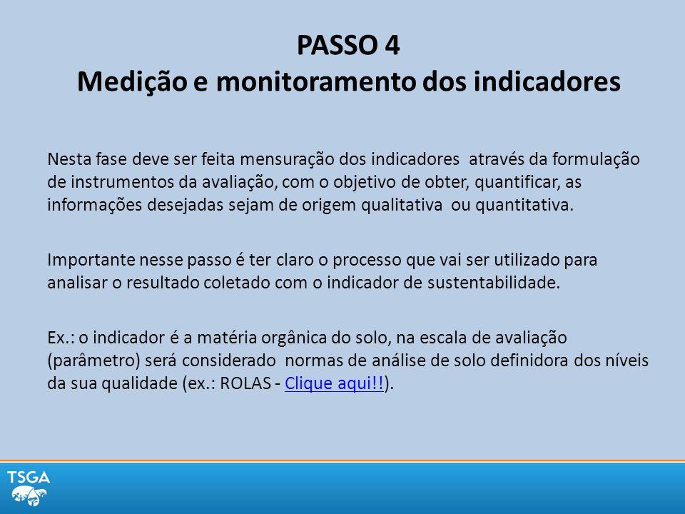 PASSO 4 Medição e monitoramento dos indicadores Nesta fase deve ser feita mensuração dos indicadores através da formulação de instrumentos da avaliaçã