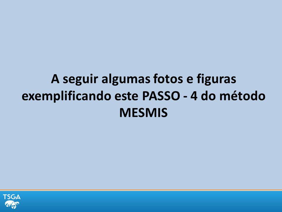 A seguir algumas fotos e figuras exemplificando este PASSO - 4 do método MESMIS