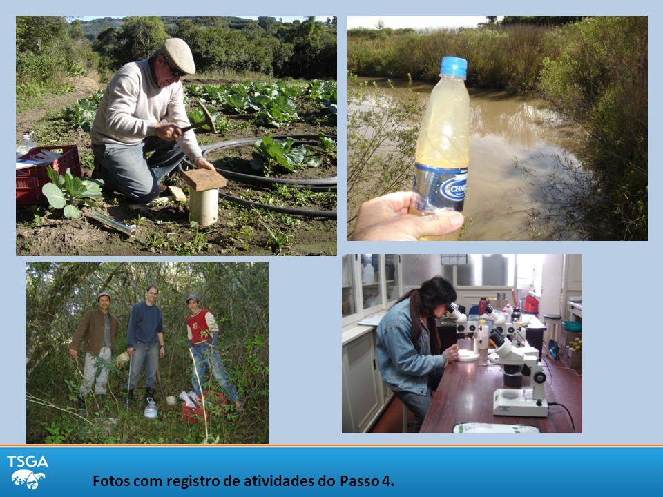 Fotos com registro de atividades do Passo 4.