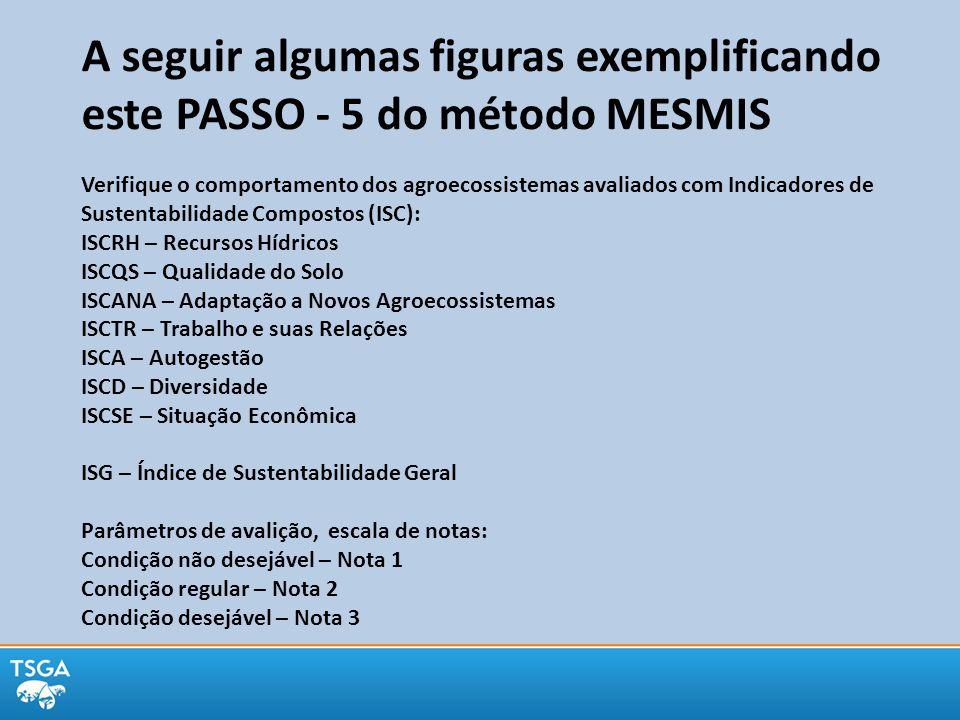 A seguir algumas figuras exemplificando este PASSO - 5 do método MESMIS Verifique o comportamento dos agroecossistemas avaliados com Indicadores de Su