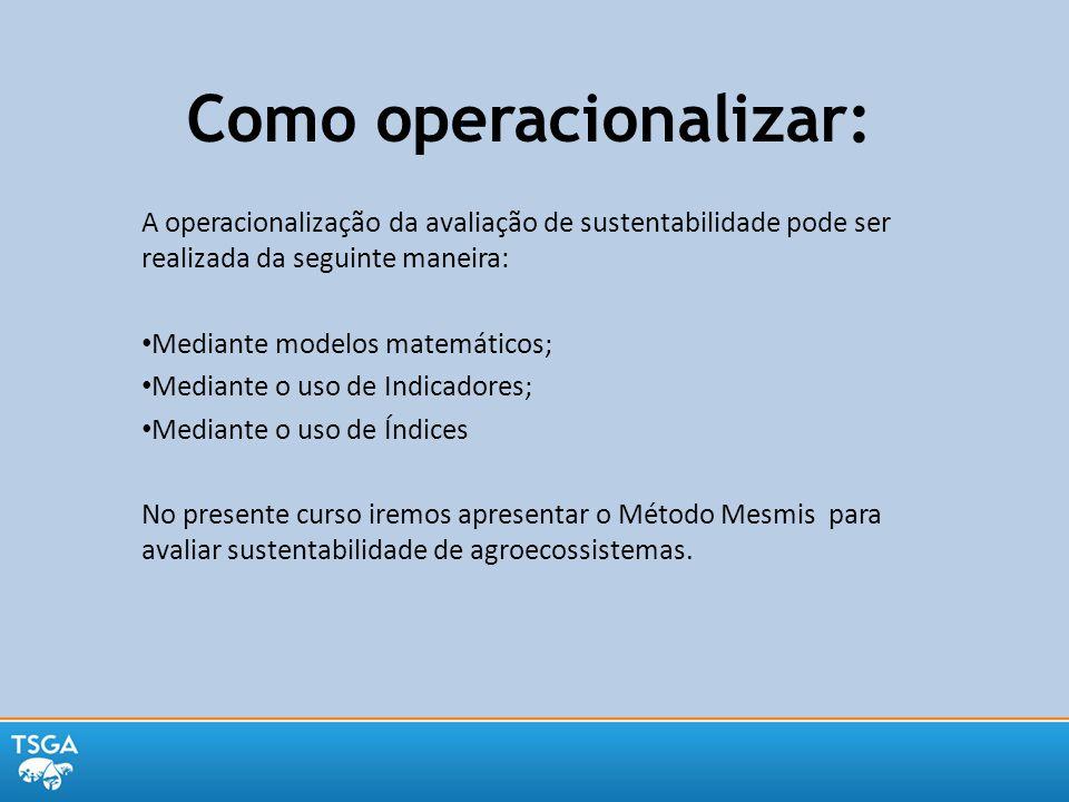 Como operacionalizar: A operacionalização da avaliação de sustentabilidade pode ser realizada da seguinte maneira: Mediante modelos matemáticos; Media