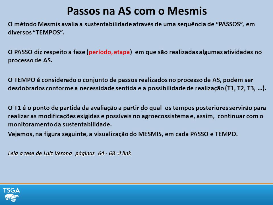 Masera e outros, 1999 Ciclo de avaliação da sustentabilidade pelo método MESMIS Passos a serem seguidos no Tempo 1 e no Tempo 2 com a continuidade do trabalho ao longo do tempo, após serem realizadas as alterações nos agroecossistemas.