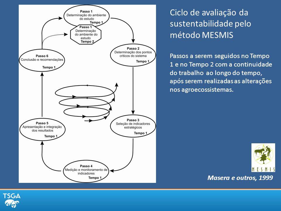 Masera e outros, 1999 Ciclo de avaliação da sustentabilidade pelo método MESMIS Passos a serem seguidos no Tempo 1 e no Tempo 2 com a continuidade do