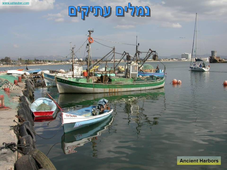 www.uzitauber.com Along the Coast line