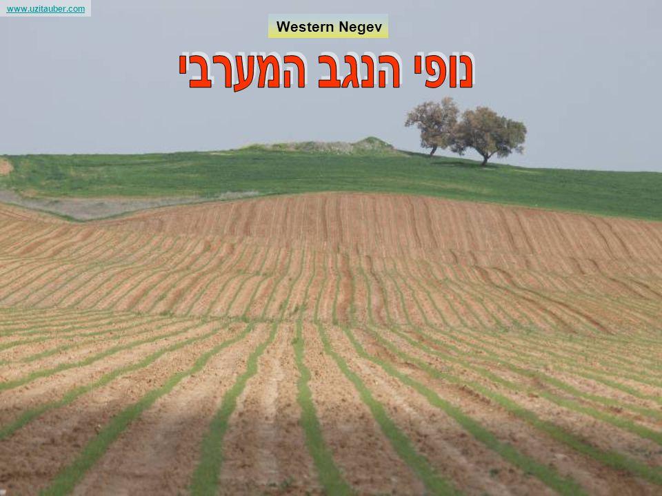 www.uzitauber.com Israel forever and the stolen lands Uzi Tauber kartis@netvision.net.il