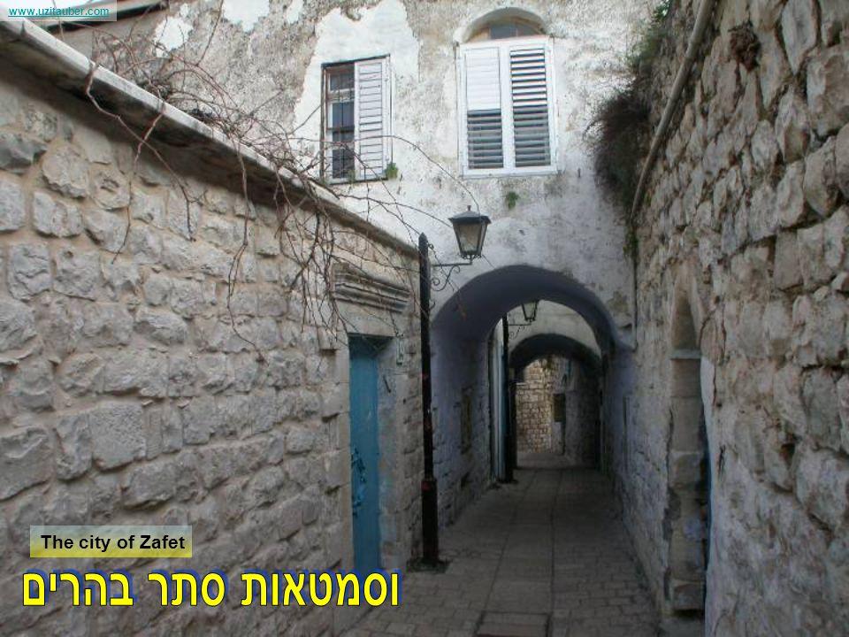 www.uzitauber.com The Sea of Galilee