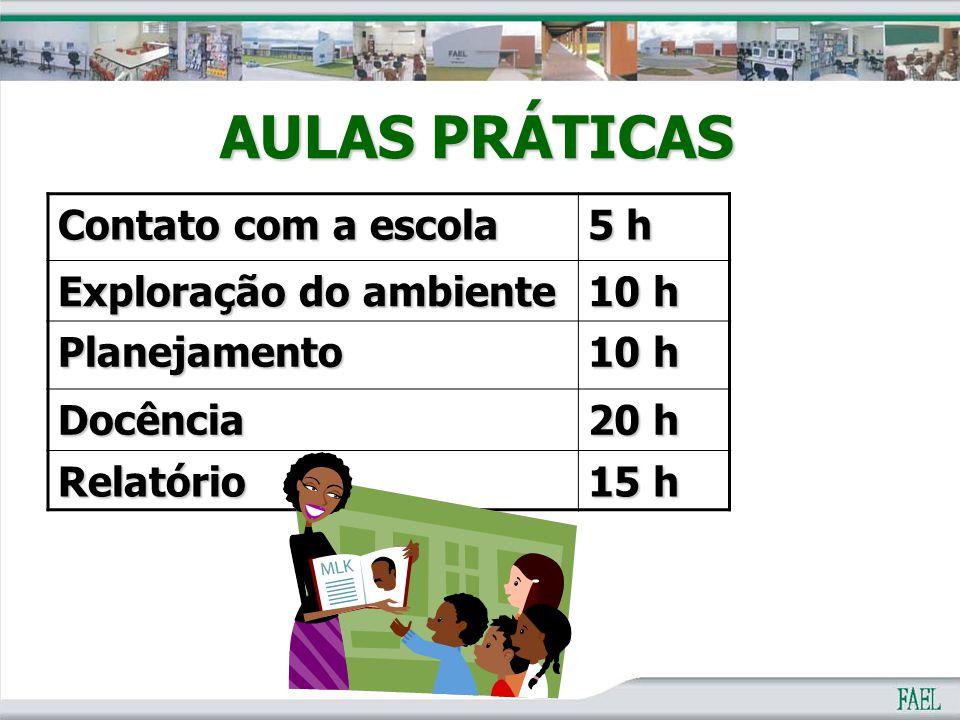 Contato com a escola 5 h Exploração do ambiente 10 h Planejamento Docência 20 h Relatório 15 h AULAS PRÁTICAS