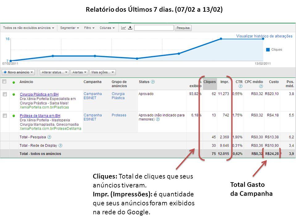 Relatório dos Últimos 7 dias.(07/02 a 13/02) Cliques: Total de cliques que seus anúncios tiveram.