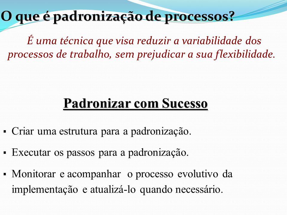 Padronizar com Sucesso Padronizar com Sucesso  Criar uma estrutura para a padronização.  Executar os passos para a padronização.  Monitorar e acomp