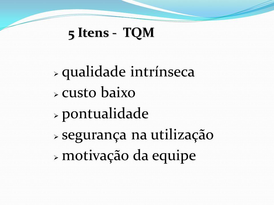  qualidade intrínseca  custo baixo  pontualidade  segurança na utilização  motivação da equipe 5 Itens - TQM