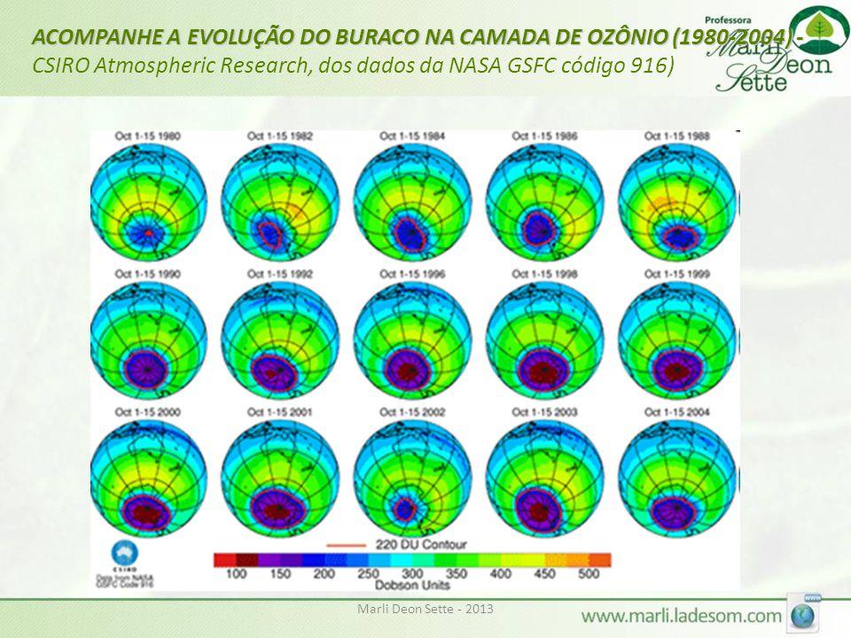 Marli Deon Sette - 2013 ACOMPANHE A EVOLUÇÃO DO BURACO NA CAMADA DE OZÔNIO (1980-2004) - ACOMPANHE A EVOLUÇÃO DO BURACO NA CAMADA DE OZÔNIO (1980-2004