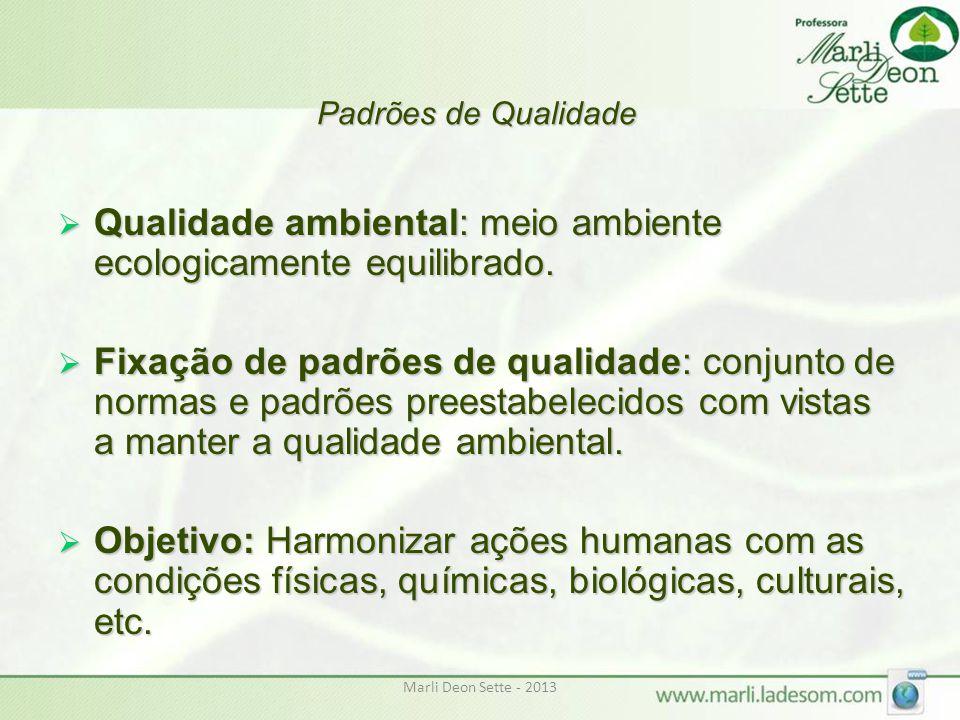 Padrões de Qualidade  Qualidade ambiental: meio ambiente ecologicamente equilibrado.  Fixação de padrões de qualidade: conjunto de normas e padrões