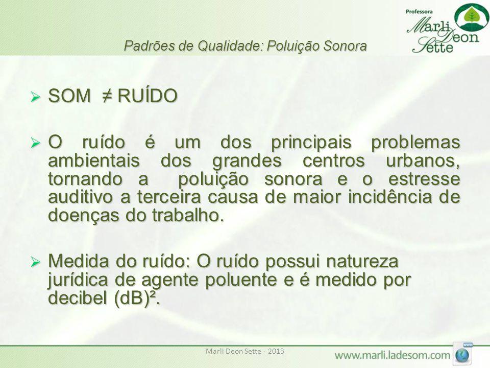 Marli Deon Sette - 2013 Padrões de Qualidade: Poluição Sonora  SOM ≠ RUÍDO  O ruído é um dos principais problemas ambientais dos grandes centros urb