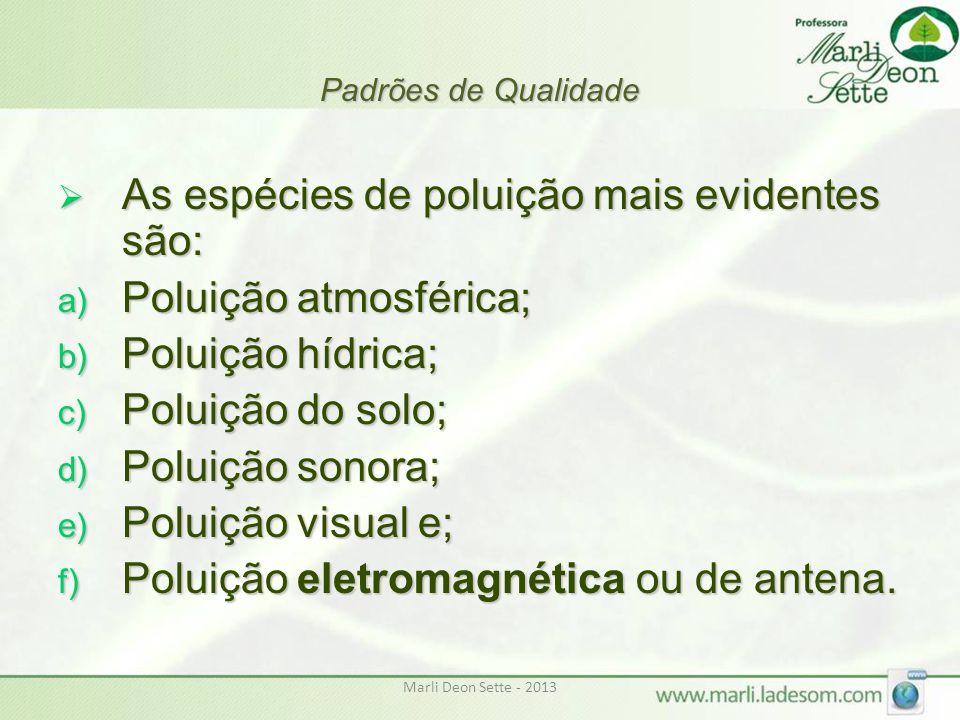 Marli Deon Sette - 2013 Padrões de Qualidade  As espécies de poluição mais evidentes são: a) Poluição atmosférica; b) Poluição hídrica; c) Poluição d