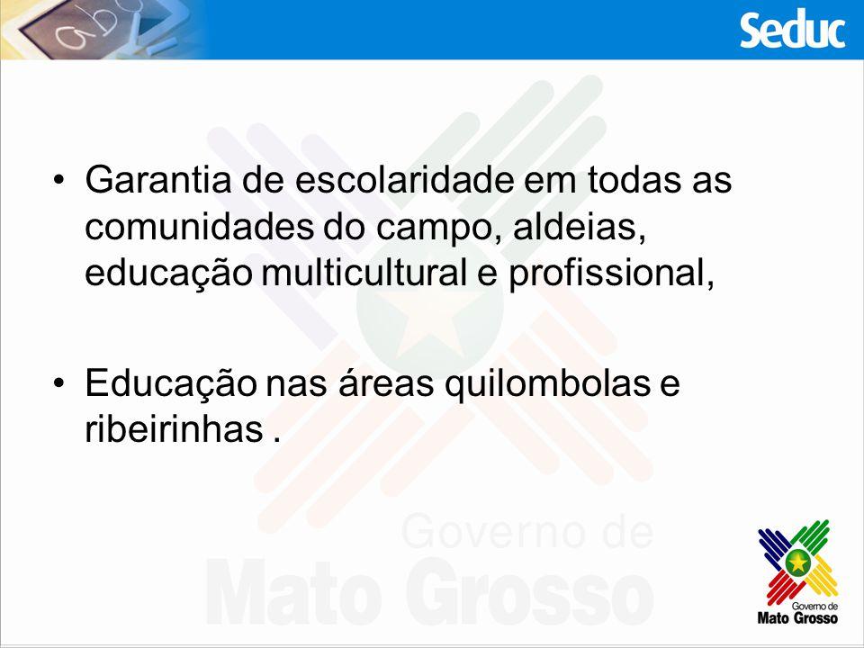Garantia de escolaridade em todas as comunidades do campo, aldeias, educação multicultural e profissional, Educação nas áreas quilombolas e ribeirinha