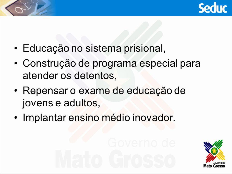 Educação no sistema prisional, Construção de programa especial para atender os detentos, Repensar o exame de educação de jovens e adultos, Implantar e
