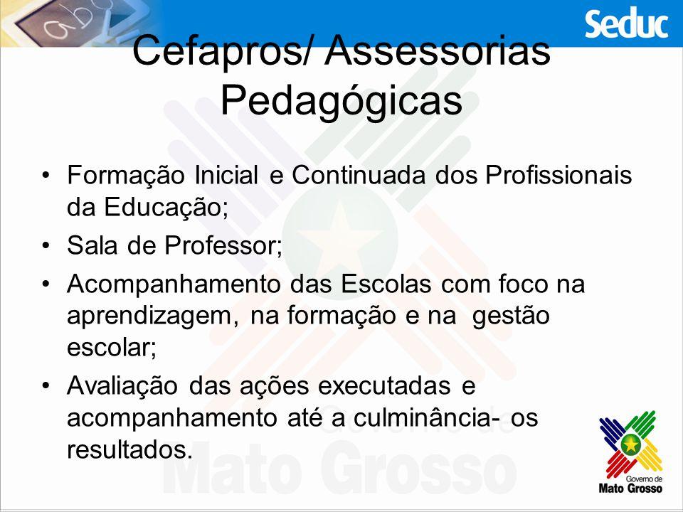 Cefapros/ Assessorias Pedagógicas Formação Inicial e Continuada dos Profissionais da Educação; Sala de Professor; Acompanhamento das Escolas com foco