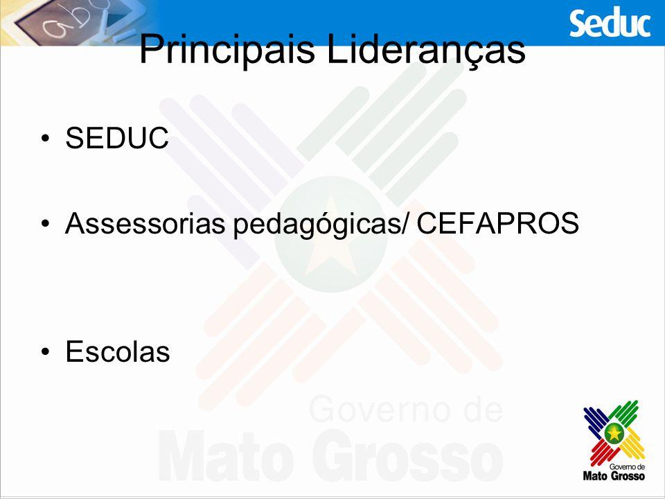 Principais Lideranças SEDUC Assessorias pedagógicas/ CEFAPROS Escolas