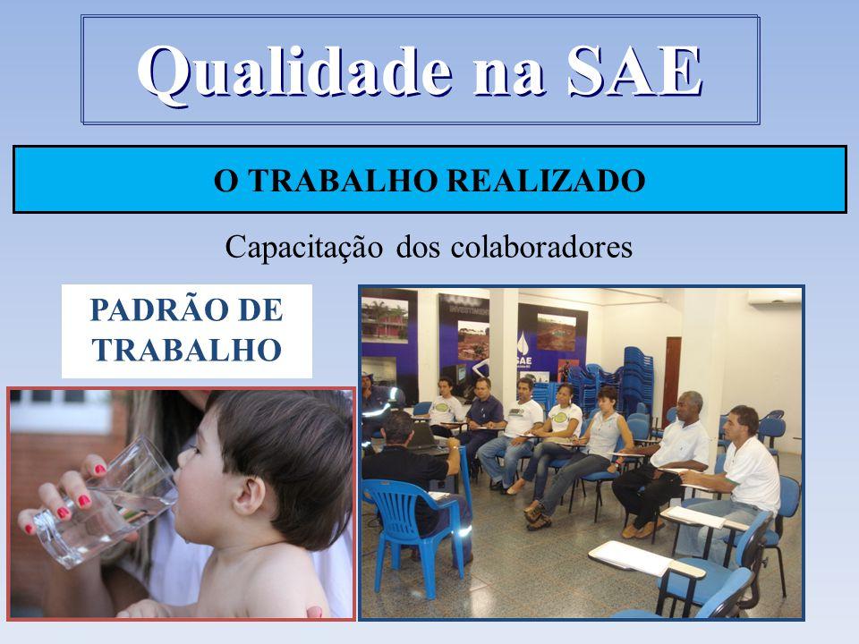 O TRABALHO REALIZADO Capacitação dos colaboradores Qualidade na SAE PADRÃO DE TRABALHO