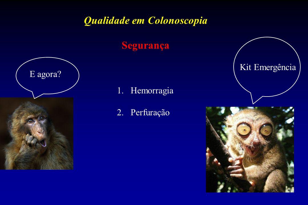 Qualidade em Colonoscopia Segurança 1.Hemorragia 2.Perfuração Kit Emergência E agora?