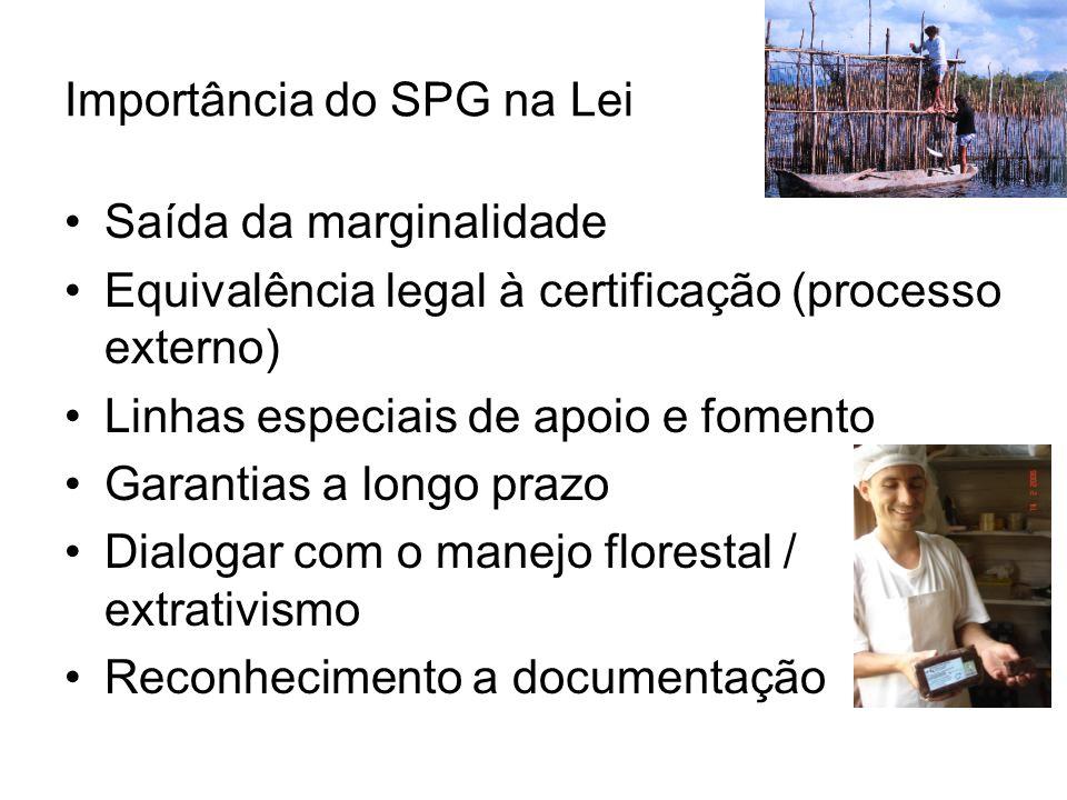 Importância do SPG na Lei Saída da marginalidade Equivalência legal à certificação (processo externo) Linhas especiais de apoio e fomento Garantias a longo prazo Dialogar com o manejo florestal / extrativismo Reconhecimento a documentação