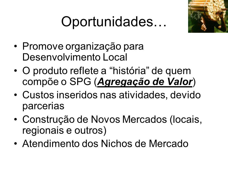 Oportunidades… Promove organização para Desenvolvimento Local O produto reflete a história de quem compõe o SPG (Agregação de Valor) Custos inseridos nas atividades, devido parcerias Construção de Novos Mercados (locais, regionais e outros) Atendimento dos Nichos de Mercado