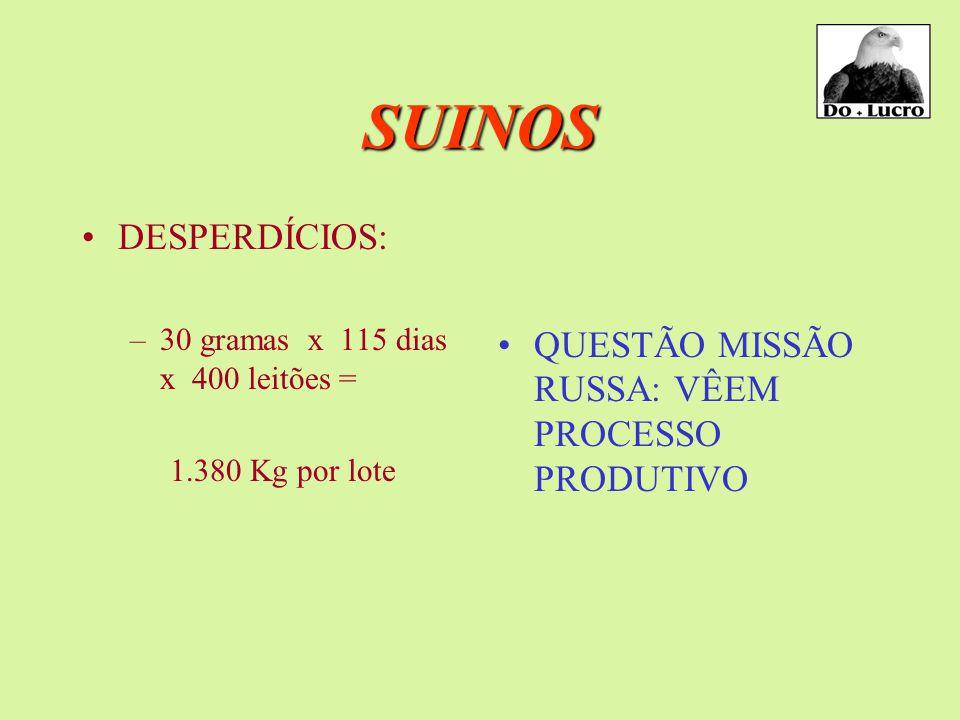 SUINOS CARCAÇA: –47,5%; –52,0% –*54 a 55% CONVERSÃO: –3,05 –2,72 –*2,60 SANIDADE: –8% p/ SIF GRANJAS U.B.L. INSEMINAÇÃO P.S.E.(síndrome de stresses) –