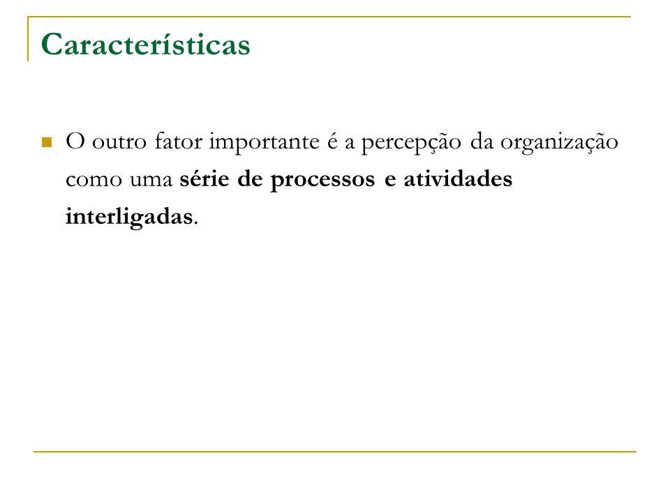 Características O outro fator importante é a percepção da organização como uma série de processos e atividades interligadas.