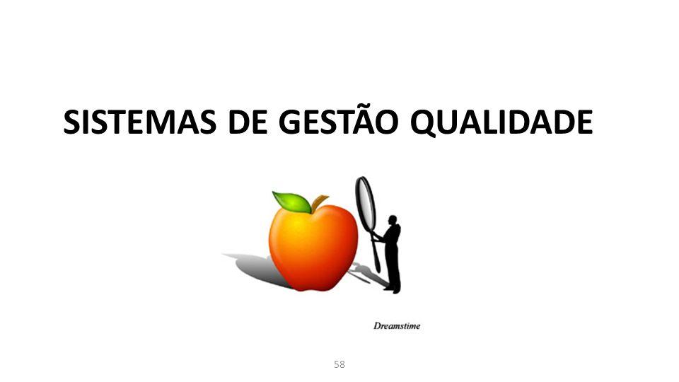 SISTEMAS DE GESTÃO QUALIDADE 58