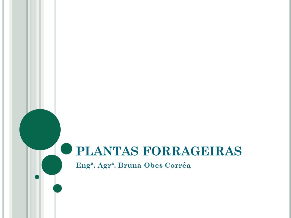 PLANTAS FORRAGEIRAS Engª. Agrª. Bruna Obes Corrêa