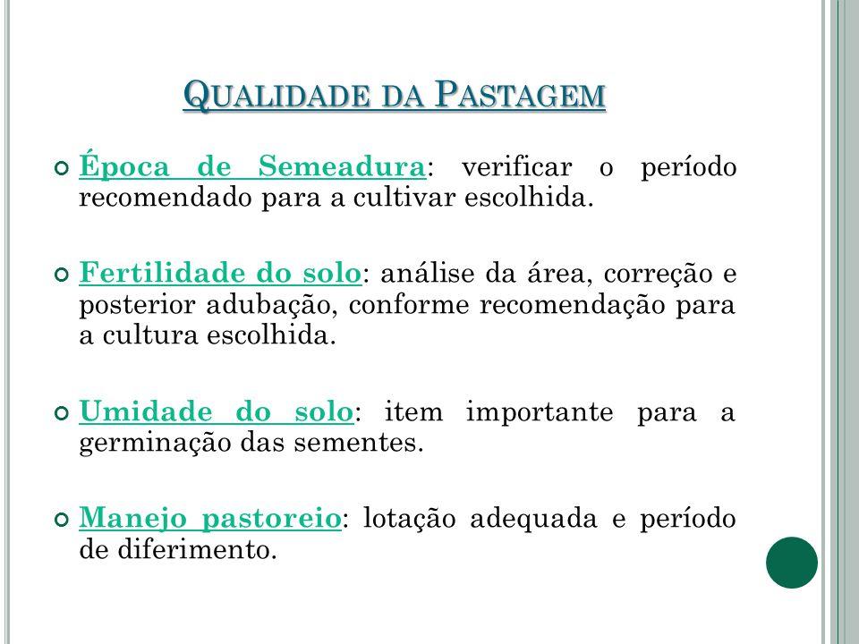 Q UALIDADE DA P ASTAGEM Época de Semeadura : verificar o período recomendado para a cultivar escolhida. Fertilidade do solo : análise da área, correçã