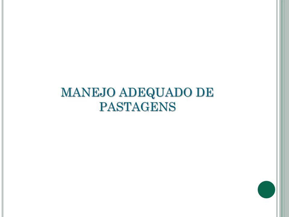 MANEJO ADEQUADO DE PASTAGENS