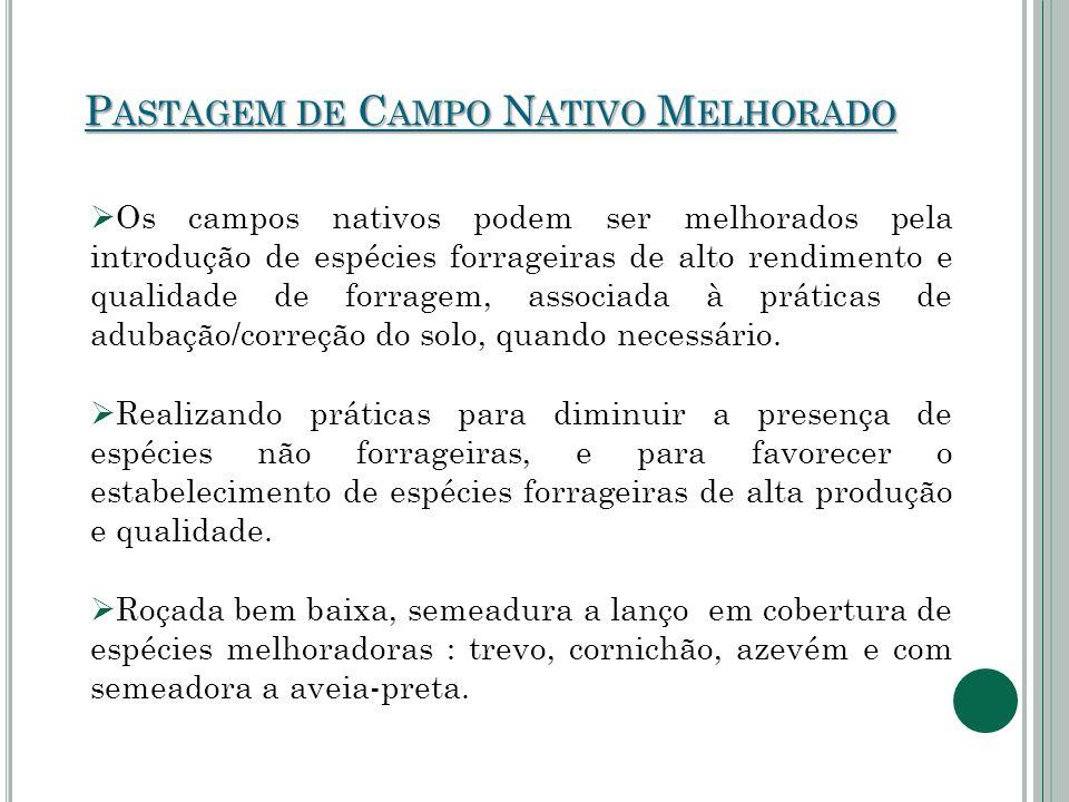 P ASTAGEM DE C AMPO N ATIVO M ELHORADO  Os campos nativos podem ser melhorados pela introdução de espécies forrageiras de alto rendimento e qualidade