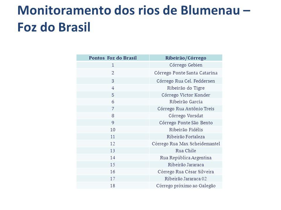 Monitoramento dos rios de Blumenau – Foz do Brasil Pontos Foz do BrasilRibeirão/Córrego 1Córrego Gebien 2Córrego Ponte Santa Catarina 3Córrego Rua Cel.