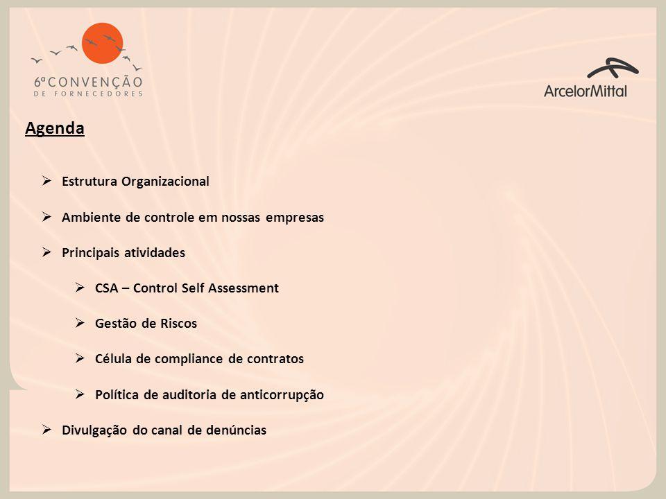 Agenda  Estrutura Organizacional  Ambiente de controle em nossas empresas  Principais atividades  CSA – Control Self Assessment  Gestão de Riscos