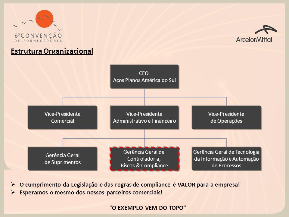 CEO Aços Planos América do Sul Vice-Presidente Comercial Vice-Presidente Administrativo e Financeiro Vice-Presidente de Operações Estrutura Organizaci