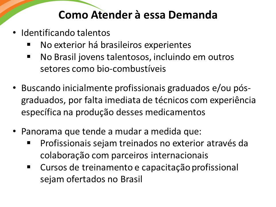 Como Atender à essa Demanda Identificando talentos  No exterior há brasileiros experientes  No Brasil jovens talentosos, incluindo em outros setores
