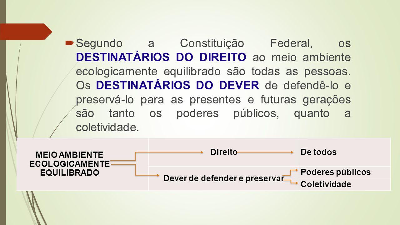 Premissas do Processo Formativo em Escolas Sustentáveis e Com-Vida, curso de extensão desenvolvido pelo Ministério da Educação em conjunto com as Universidades Federais do Mato Grosso (UFMT), Mato Grosso do Sul (UFMS) e Ouro Preto (Ufop) em 2010.