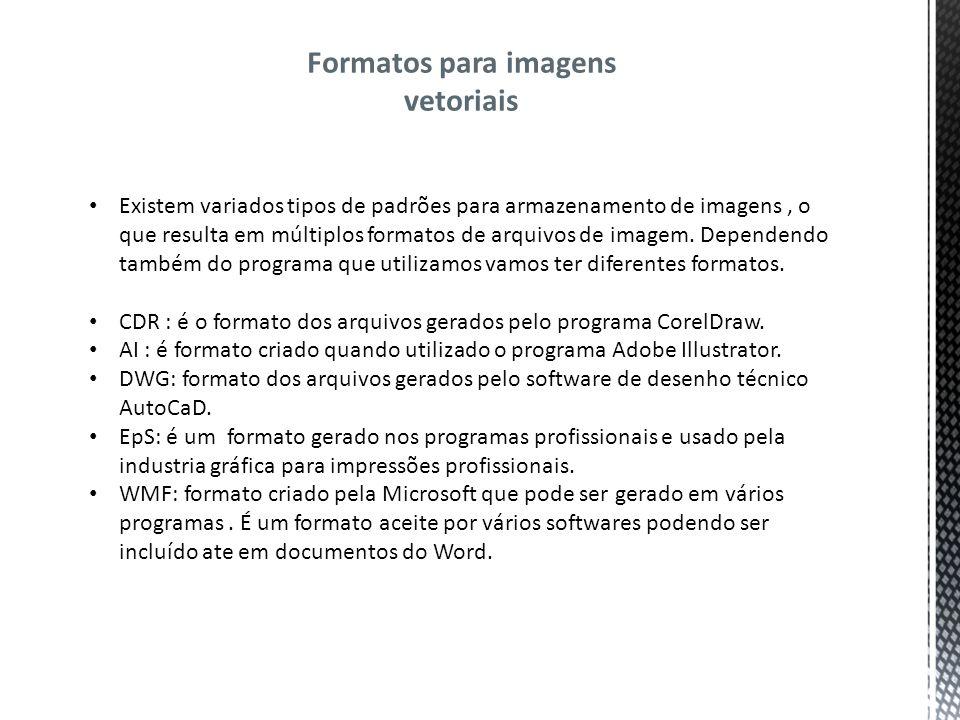 Formatos para imagens vetoriais Existem variados tipos de padrões para armazenamento de imagens, o que resulta em múltiplos formatos de arquivos de imagem.