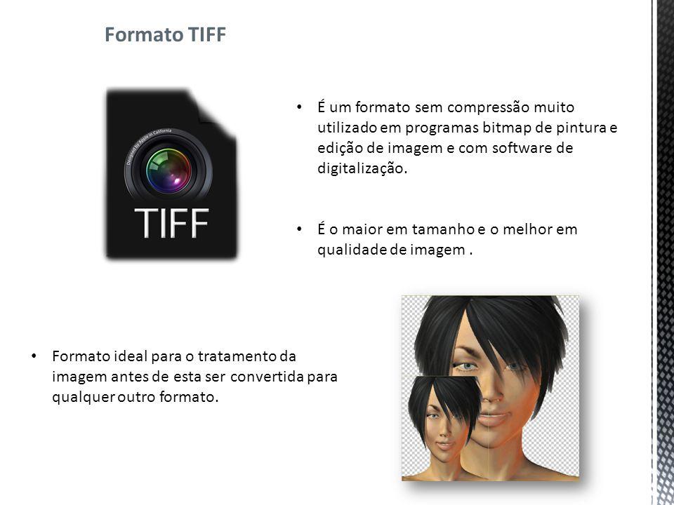 Formato TIFF É um formato sem compressão muito utilizado em programas bitmap de pintura e edição de imagem e com software de digitalização.