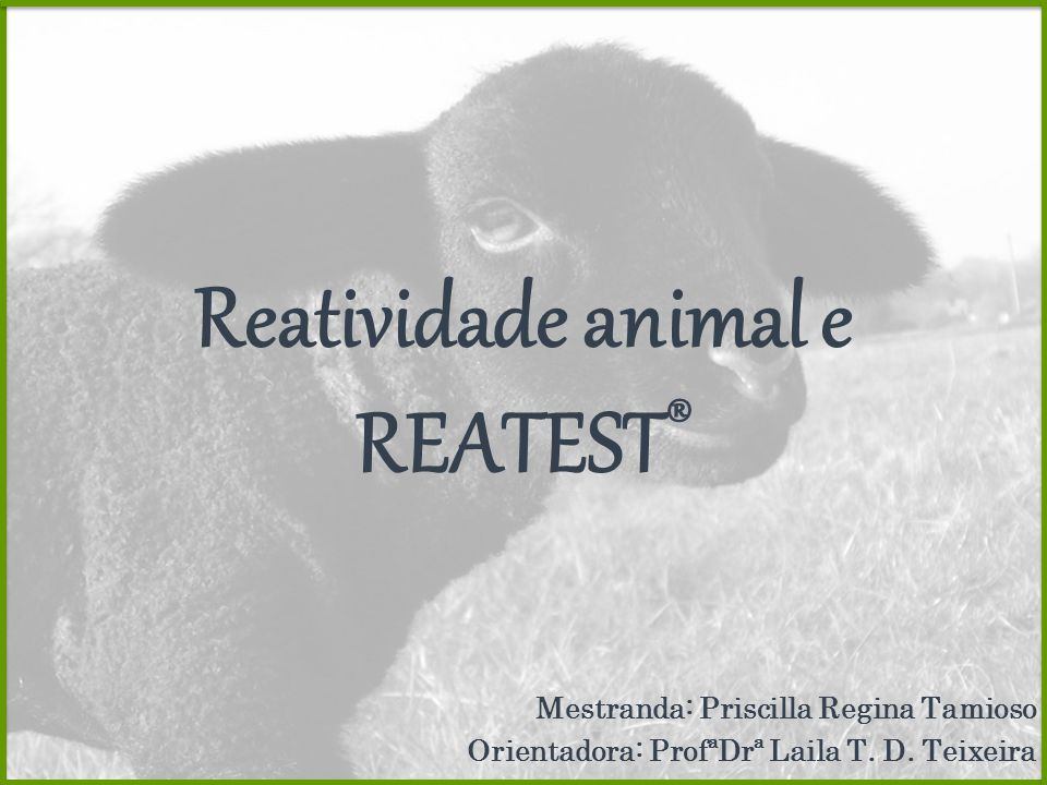 Reatividade animal e REATEST ® Mestranda: Priscilla Regina Tamioso Orientadora: ProfªDrª Laila T. D. Teixeira