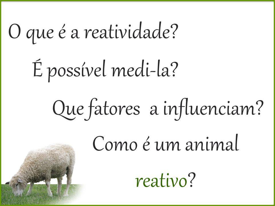 É possível medi-la? Como é um animal reativo? O que é a reatividade? Que fatores a influenciam?