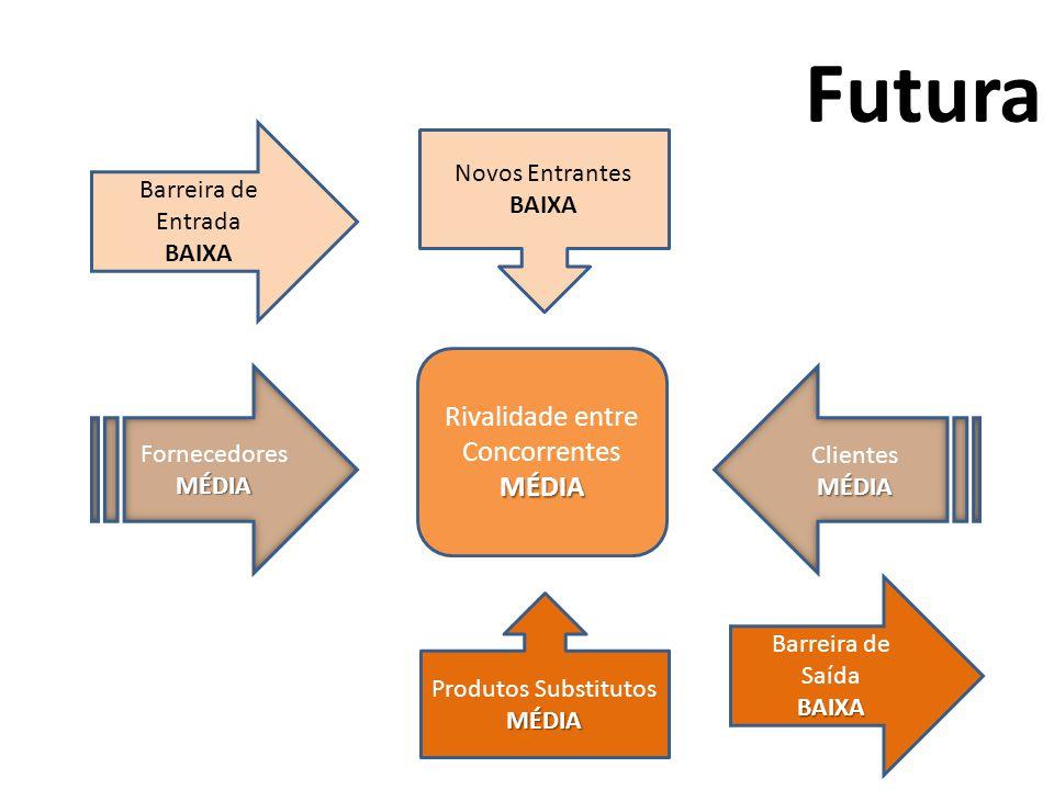 Barreira de Entrada BAIXA Rivalidade entre ConcorrentesMÉDIA Produtos SubstitutosMÉDIA Novos Entrantes BAIXA FornecedoresMÉDIA ClientesMÉDIA Barreira