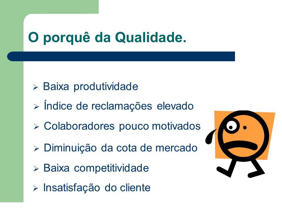 Com a Qualidade pretendemos…  Caminhar para a melhoria contínua (Certificação)  Aumentar a confiança e satisfação do cliente  Melhorar os processos de forma a aumentar a produtividade  Diminuir os custos da não qualidade  Valorização e consequente motivação dos colaboradores
