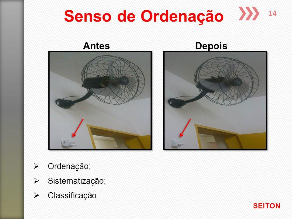 14 AntesDepois  Ordenação;  Sistematização;  Classificação. Senso de Ordenação SEITON