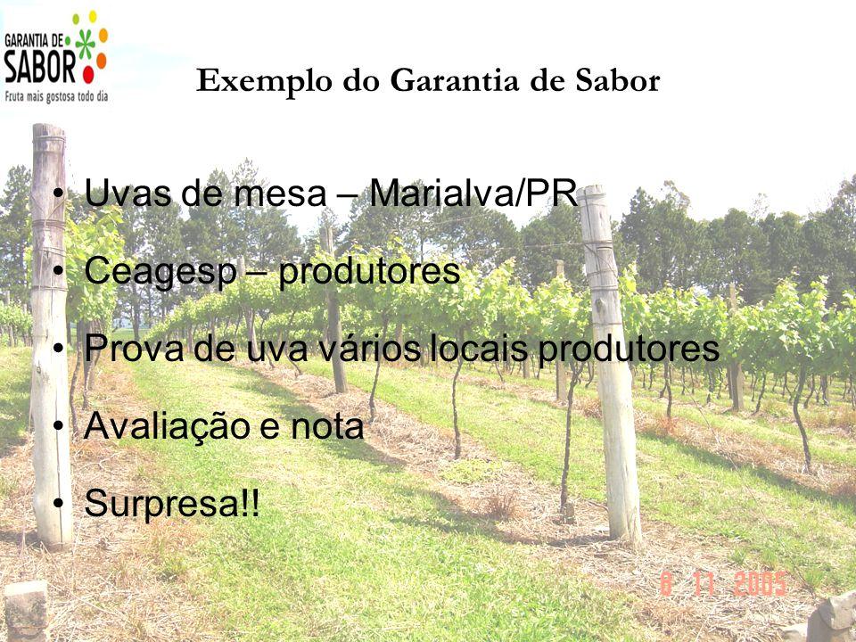 Exemplo do Garantia de Sabor Uvas de mesa – Marialva/PR Ceagesp – produtores Prova de uva vários locais produtores Avaliação e nota Surpresa!!